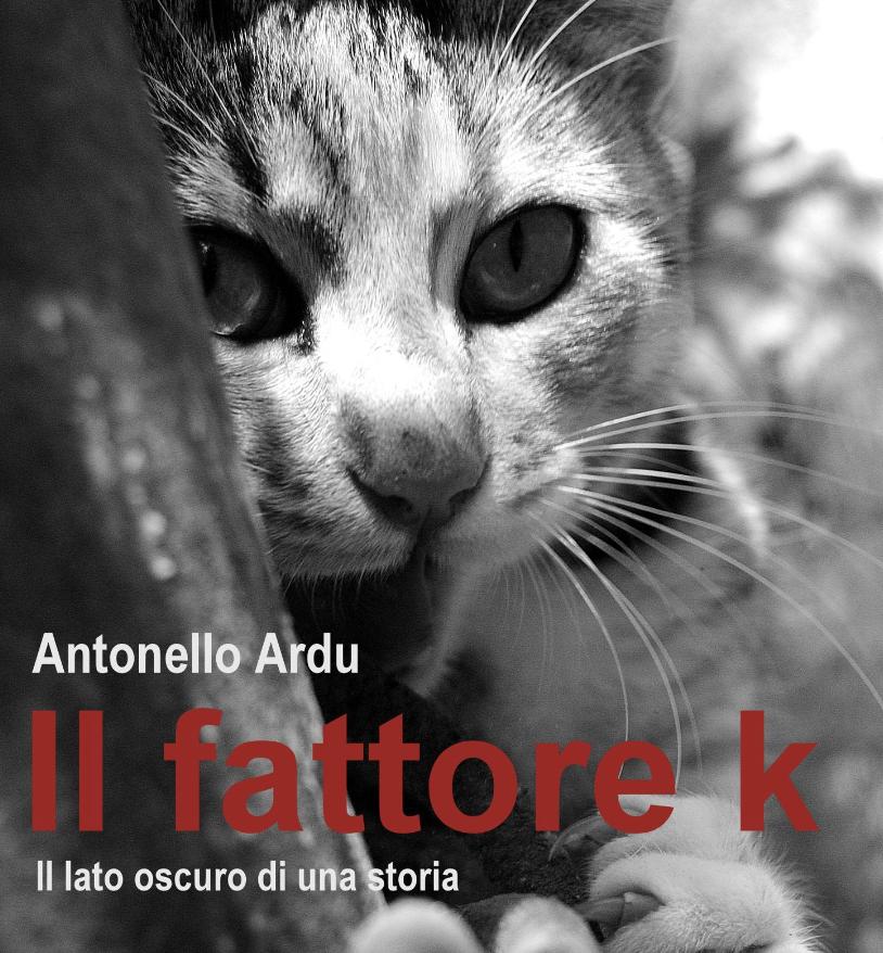 """Antonello Ardu, copertina del libro """"Il fattore k""""."""