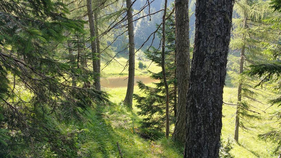 Trentino (CC0 Public Domain)